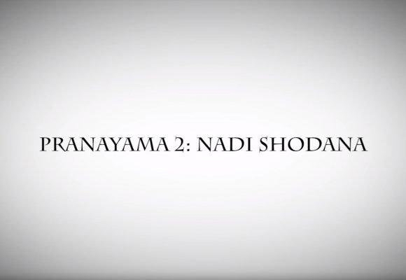 PRANAYAMA TECHNIQUE 2: NADI SHODANA