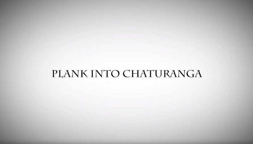 PLANK INTO CHATURANGA AND SURYA NAMASKAR